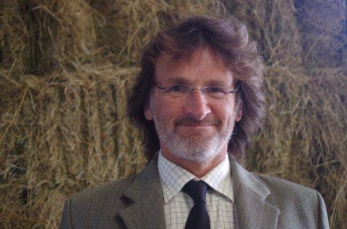 Meet Our ED, Wayne Copp. Blog Post