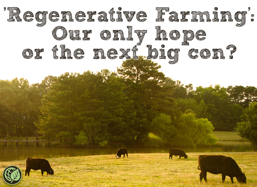 Regenerative Farming: Our Only Hope Or The Next Big Con?